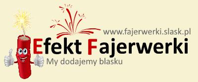 fajerwerki_logo_tlo